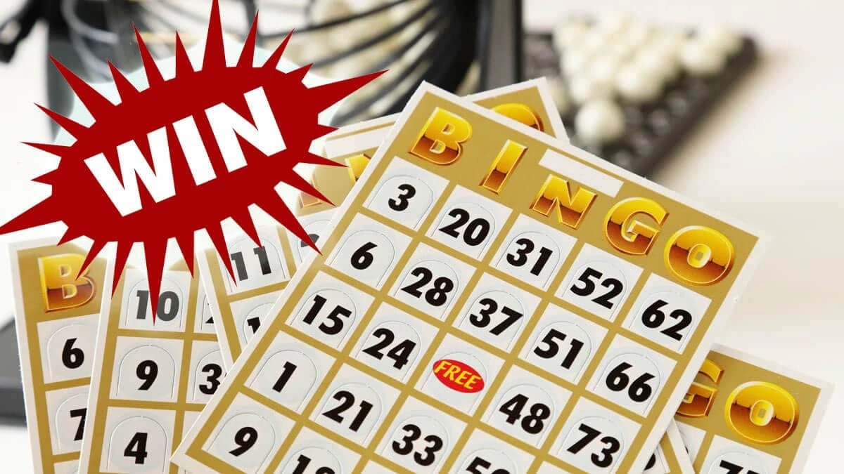 Four Non-Conventional Bingo Games Explored