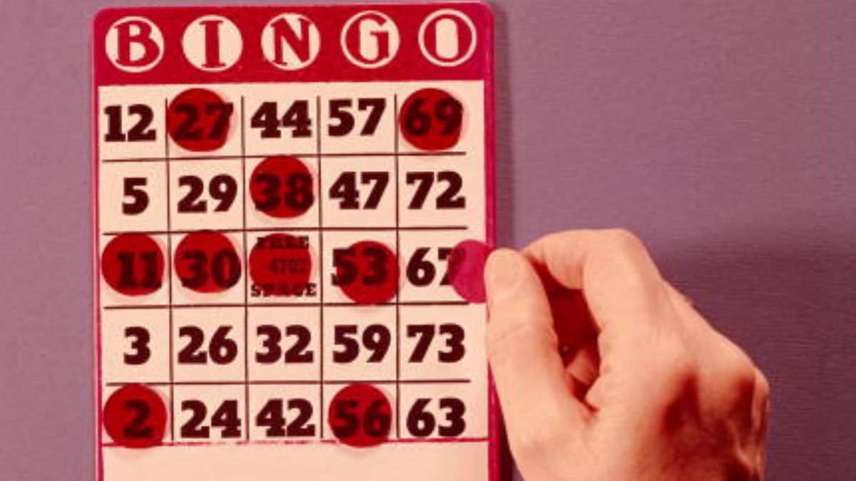Play Bingo Free Of Charge and Win Money